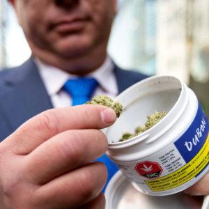 大麻を持つ男性