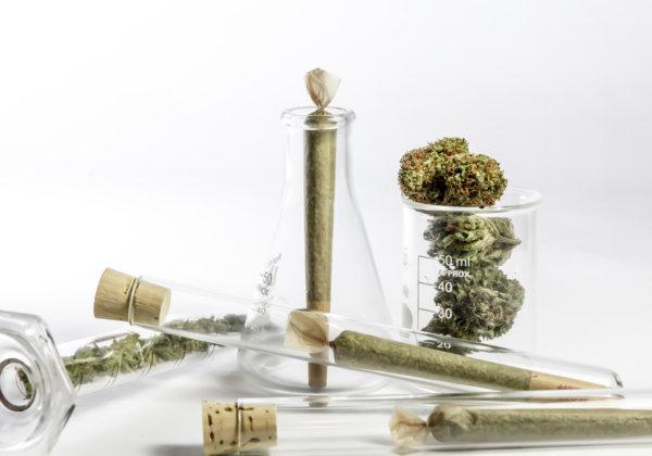 大麻とジョイント