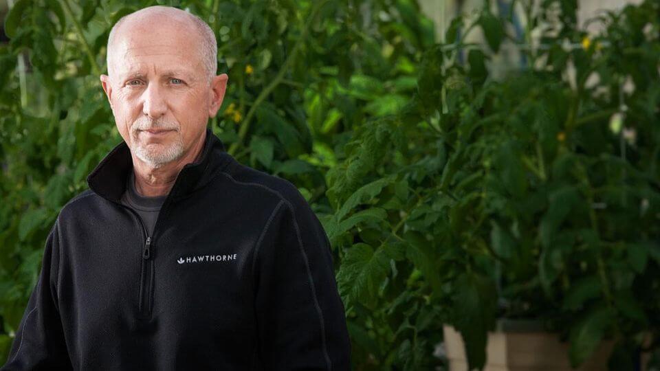 大麻関連企業CEO