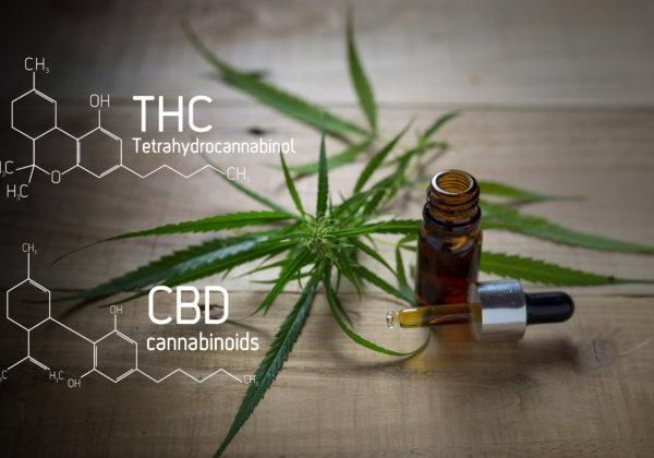 THCとCBD