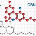大麻の主成分の1つのCBNって何??CBN(カンナビノール)の知られざる効果を解説!