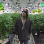 ウィズ・カリファ(Wiz Khalifa)が作った大麻育成ゲーム