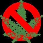大麻をやめたい!大麻をやめる方法を考えてみた