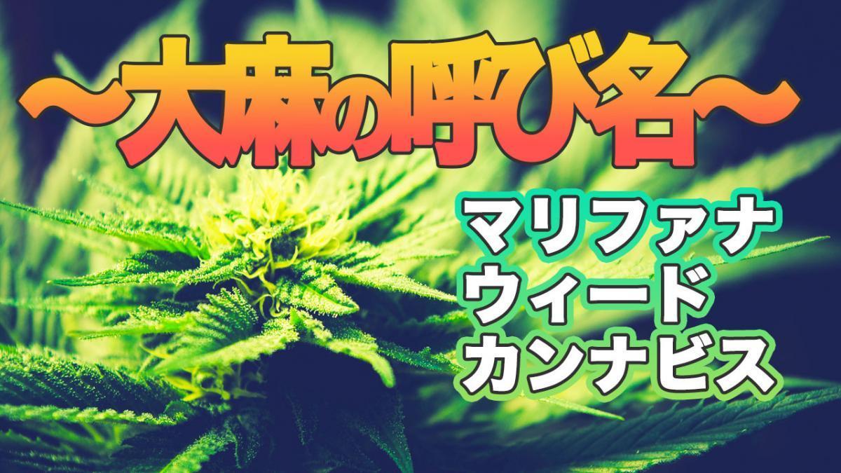 大麻の呼び方