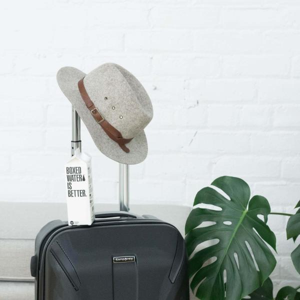 スーツケースと帽子