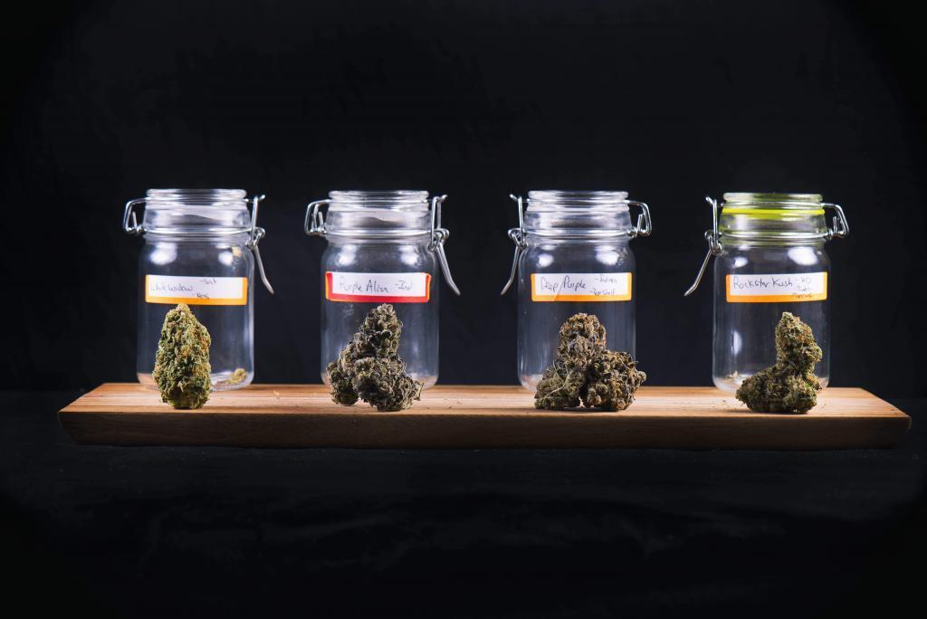品種別大麻