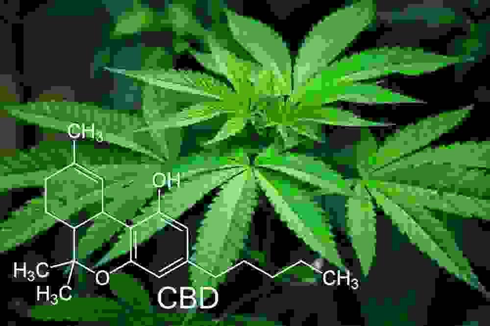 カンナビジオール(CBD)は他の薬と併用可能なのか?