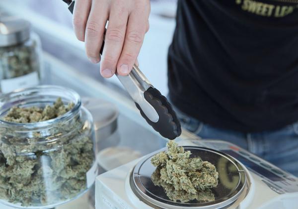 大麻を掴む男性