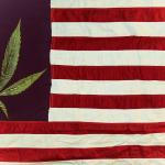 米大統領候補討論会で大麻改革について学んだこと