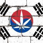 医療用大麻を合法化した韓国のメディカルツーリズム戦略が、日本を席捲する日