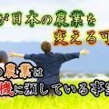【大麻が日本の救世主?】大麻が日本の農業を変える可能性を考えてみた。