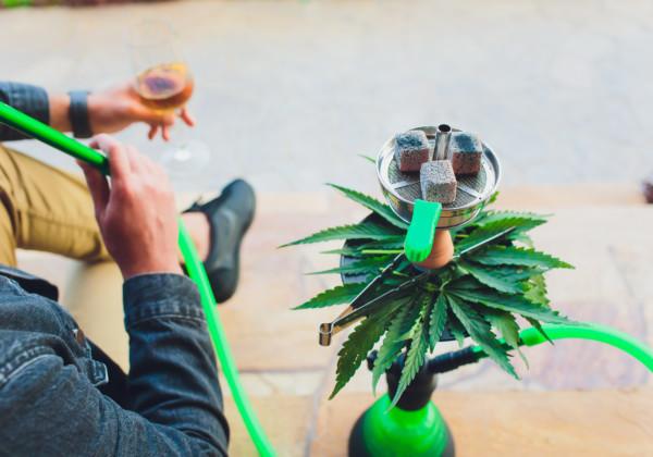 大麻草とシーシャを吸う男性