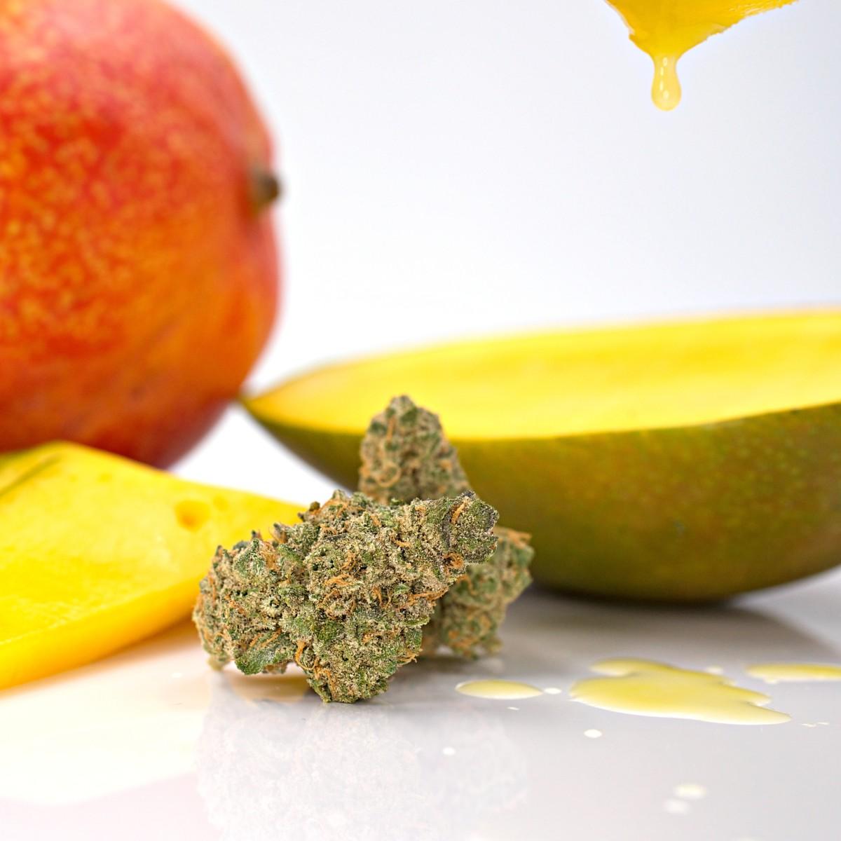 大麻とマンゴー