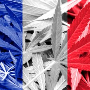 フランス国旗(大麻柄)