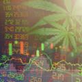 日本のネット証券で買える大麻関連株5選!