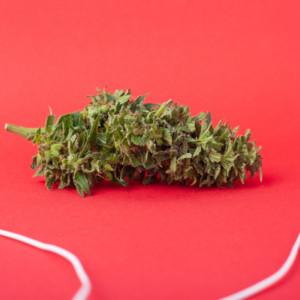 大麻とイヤホン