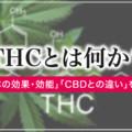 大麻の主成分であるTHCってどんな成分?THCの歴史や効果・効能を解説!