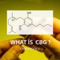 CBDに次ぐ注目成分「CBG(カンナビゲロール)って何?どんな成分?