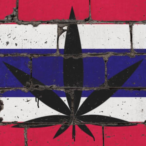 タイ国旗(大麻草柄)