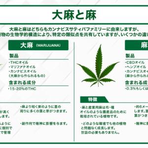 大麻と麻(ヘンプ)の違い