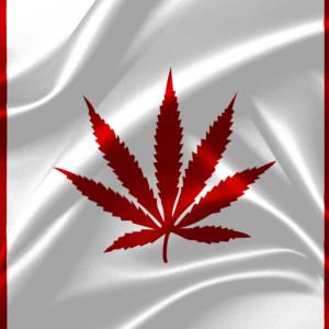 カナダ国旗(大麻草ver)