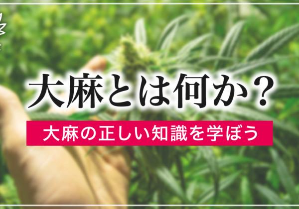 大麻とは何か?