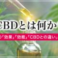 CBDとは何か?大麻の主成分であるCBDの効果・効能を徹底解説