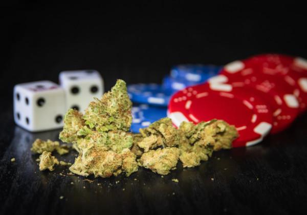 大麻とサイコロとチップ