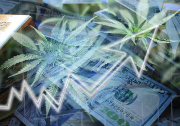 大麻と株価