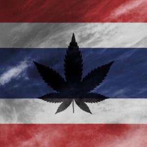 タイ国旗と大麻草