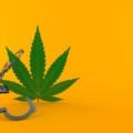 大麻「使用罪」の創設の可能性!世界の潮流と逆行する大麻厳罰化は成立するのか?