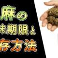 大麻に賞味期限ってあるの?大麻を新鮮に維持する保存方法を解説!