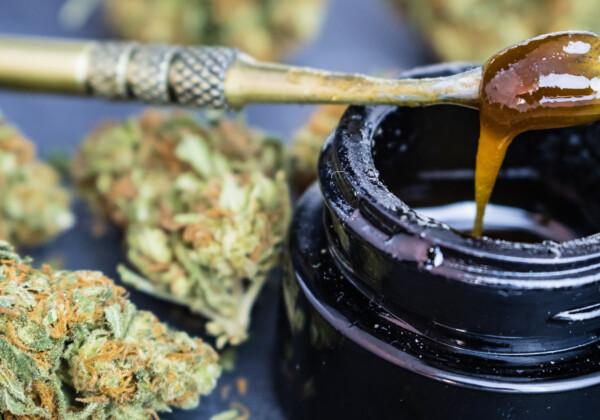 大麻濃縮物